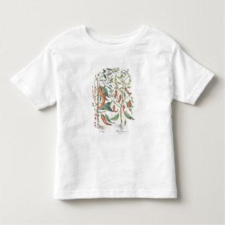 Peppers: 1.Piper Indicum maximum longum; 2.Piper I Toddler T-shirt
