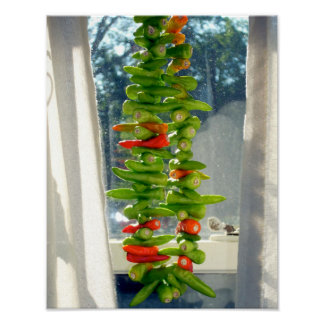 Peppers drying in the window print