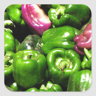 Peppers  Green Purple Square Stickers
