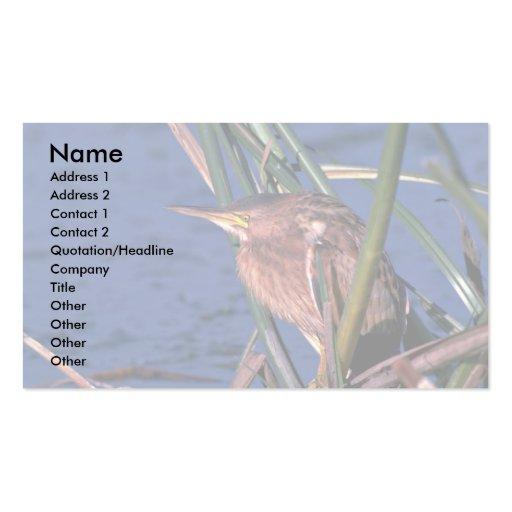Pequeña agua madre de salmuera tarjetas personales