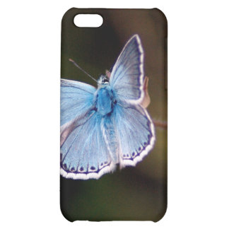 Pequeña caja azul del iPhone 4 de la mariposa