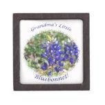Pequeña caja de regalo de Tejas del Bluebonnet de  Cajas De Joyas De Calidad