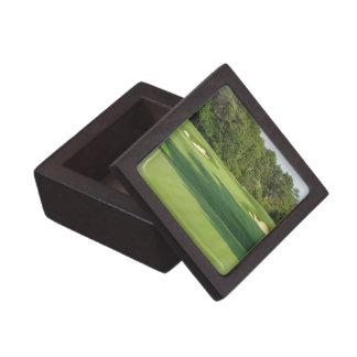 Pequeña caja de regalo del campo de golf cajas de joyas de calidad