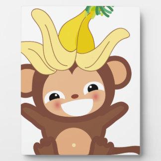 Pequeña colección 101 del mono placas con fotos