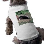 Pequeña cosa maloliente camiseta de perro