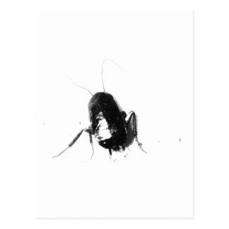 Pequeña cucaracha sola postal