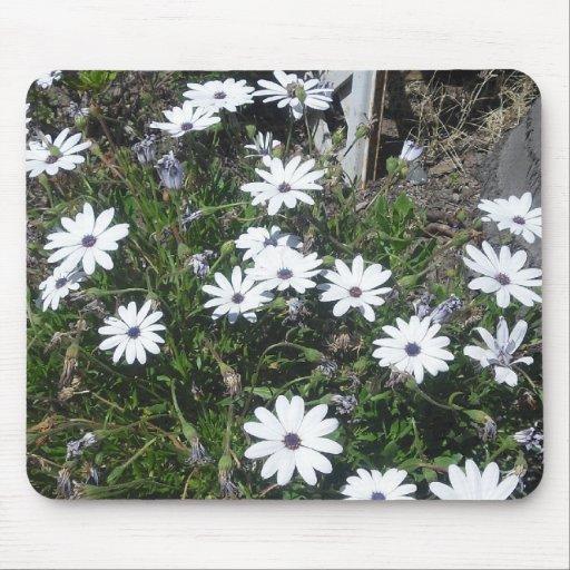 Pequeña flor blanca Mousepad