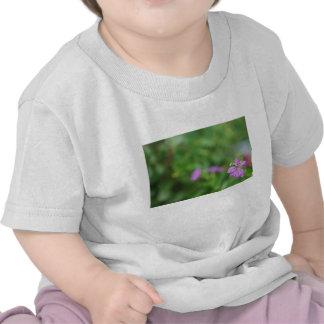 Pequeña flor púrpura del fondo verde floral camisetas