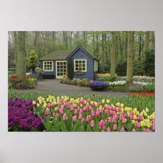 Pequeña floristería de la cabaña, jardines de Keuk Póster