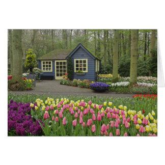 Pequeña floristería de la cabaña, jardines de Keuk Tarjeta De Felicitación