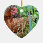 Pequeña gallina roja en la hierba adornos