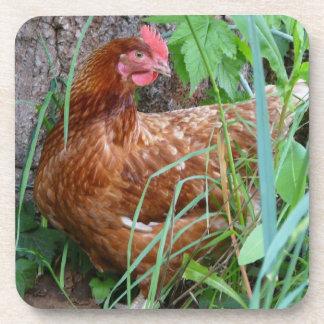 Pequeña gallina roja en la hierba posavasos de bebida