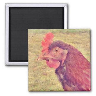 Pequeña gallina roja pintada imán cuadrado