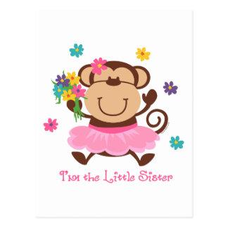 Pequeña hermana del mono postales