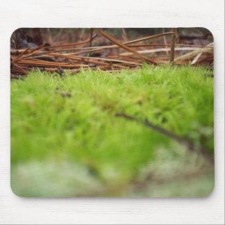 pequeña hierba alfombrilla de ratón
