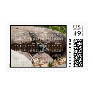 Pequeña iguana en las rocas; Calendario 2012 Estampilla