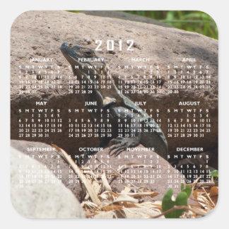 Pequeña iguana en las rocas; Calendario 2012 Pegatina Cuadrada