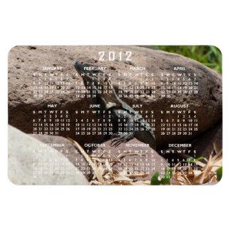 Pequeña iguana en las rocas; Calendario 2012 Rectangle Magnet
