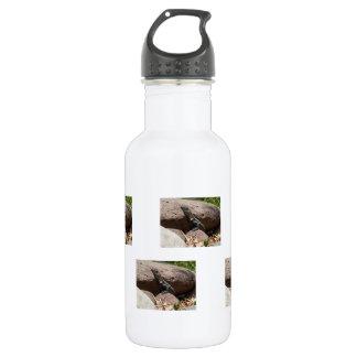 Pequeña iguana en las rocas; Ningún texto Botella De Agua De Acero Inoxidable
