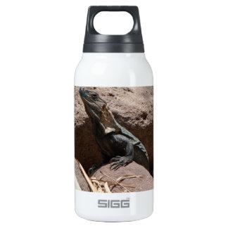 Pequeña iguana en las rocas; Ningún texto Botella Isotérmica De Agua