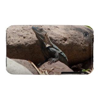 Pequeña iguana en las rocas; Ningún texto Carcasa Para iPhone 3