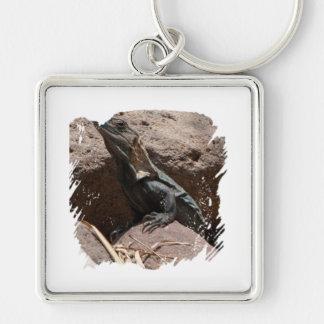 Pequeña iguana en las rocas; Ningún texto Llavero Cuadrado Plateado