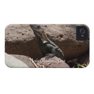 Pequeña iguana en las rocas; Personalizable Funda Para iPhone 4 De Case-Mate