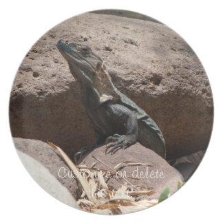 Pequeña iguana en las rocas; Personalizable Plato De Comida