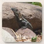 Pequeña iguana en las rocas; Personalizable Posavasos De Bebida