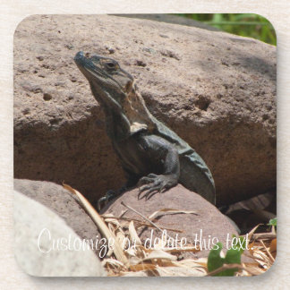 Pequeña iguana en las rocas; Personalizable Posavasos De Bebidas