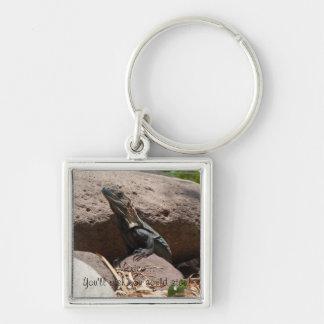 Pequeña iguana en las rocas; Recuerdo de México Llavero Cuadrado Plateado