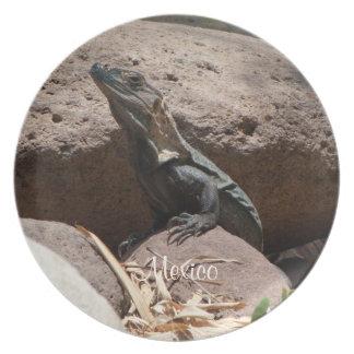 Pequeña iguana en las rocas; Recuerdo de México Platos