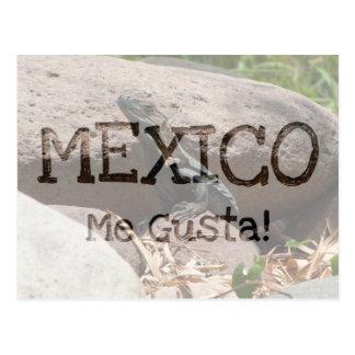 Pequeña iguana en las rocas; Recuerdo de México Tarjeta Postal