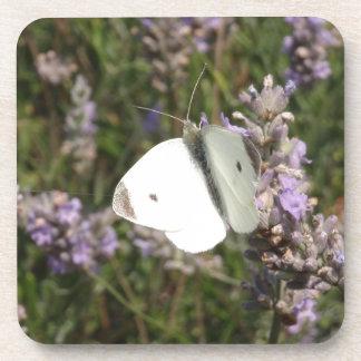 Pequeña mariposa blanca posavasos de bebida