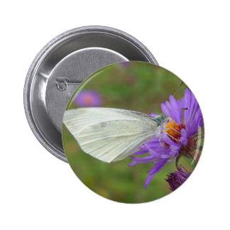 Pequeña mariposa del blanco de col pin redondo de 2 pulgadas