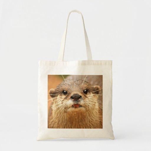 Pequeña nutria agarrada asiática bolsas