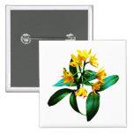 Pequeña orquídea amarilla pins