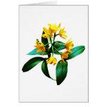 Pequeña orquídea amarilla tarjeta de felicitación