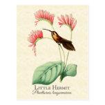 Pequeña postal del arte del colibrí del ermitaño