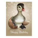 Pequeña postal linda del pato