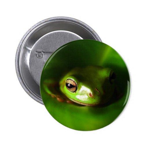 pequeña rana verde en hoja verde pin redondo 5 cm