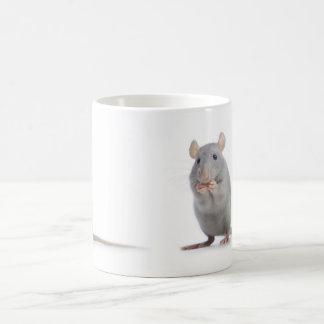 pequeña rata taza básica blanca