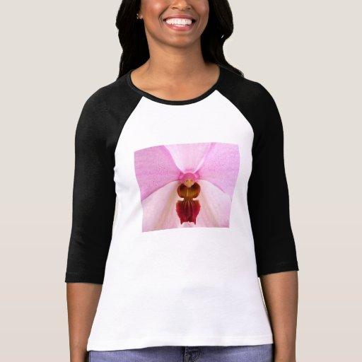 pequeña señora mayor camisetas