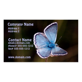 Pequeña tarjeta de visita azul de la mariposa