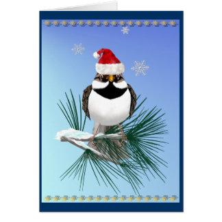 Pequeña tarjeta del gorrión de Santa (azul clara)