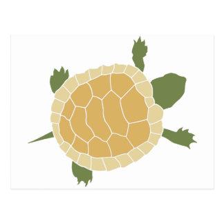 Pequeña tortuga de arrastre linda de la tortuga postales