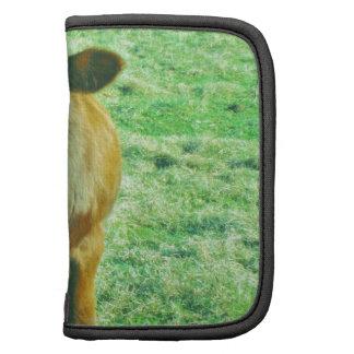 Pequeña vaca de Brown en hierba verde en colores p Planificador