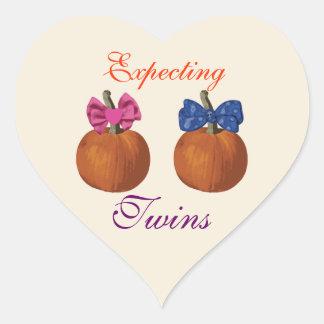 Pequeñas calabazas que cuentan con a gemelos pegatina en forma de corazón