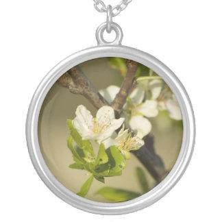 Pequeñas flores blancas en una rama con algunas ho colgante redondo