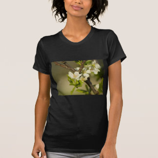 Pequeñas flores blancas en una rama con las hojas camiseta